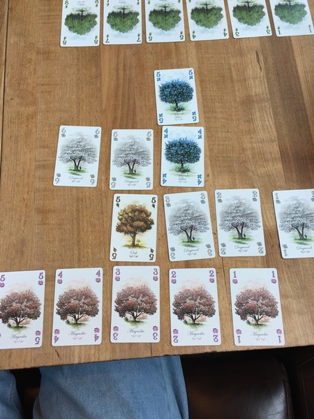 Arboretum - Tableau