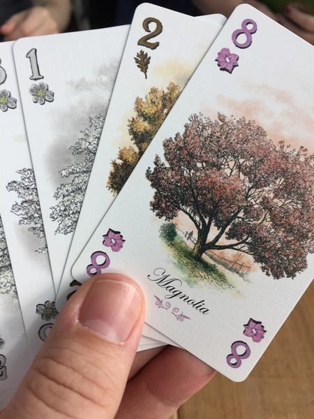 Arboretum - Trees