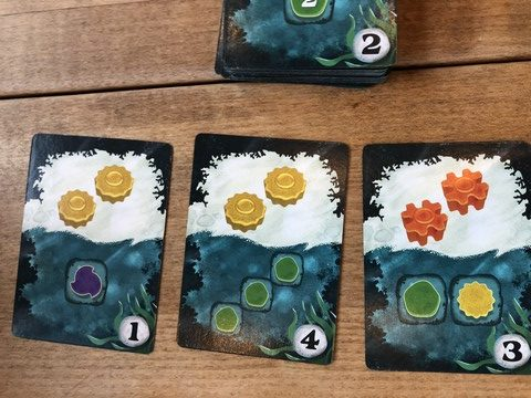 Reef - Cards