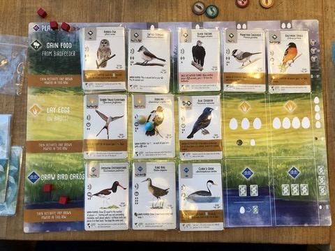 wingspan - final aviary
